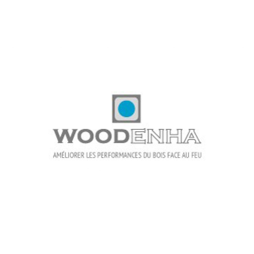 Logo woodenha bois performance